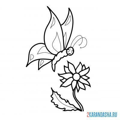 Print a coloring book butterfly on a flower on A4