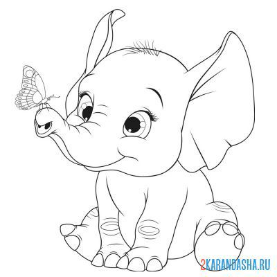 Print a coloring book beautiful baby elephant with bow tie on A4