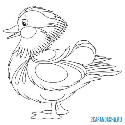 Print a coloring book unusual duck on A4