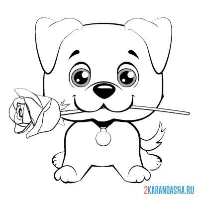 Print a coloring book cute puppy with a rose on A4